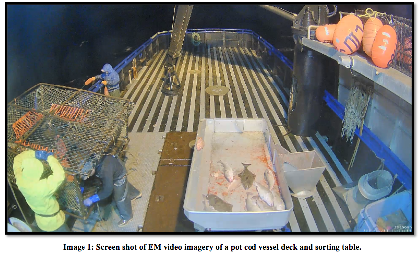 Sceen shot of EM video imagery of a pot cod vessel deck and sorting table