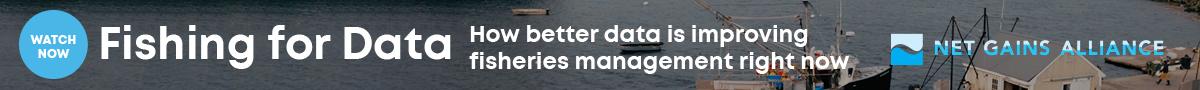 Fishing-for-data